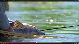 photo-truite-arcenciel-juillet2015