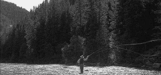 Photo d'un pêcheur à la mouche sur la Gallatin River dans le Montana