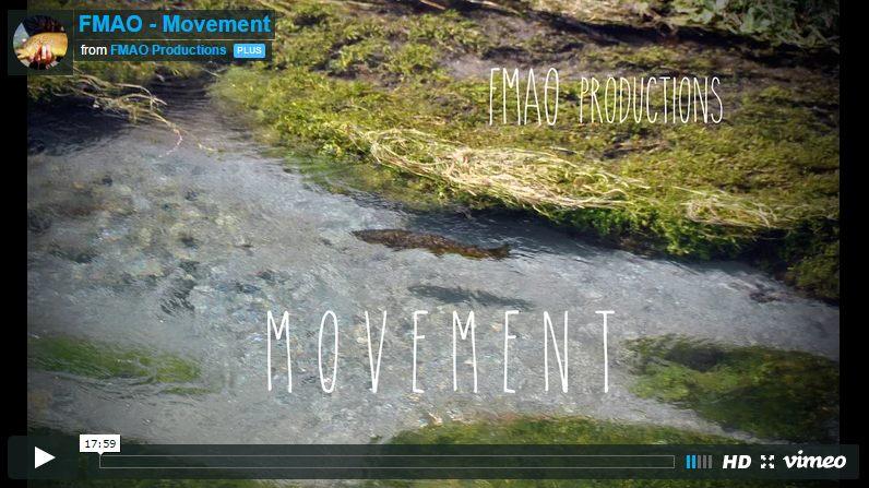 Photo d'une rivière dans une vidéo d'un trip pêche en Nouvelle Zélande