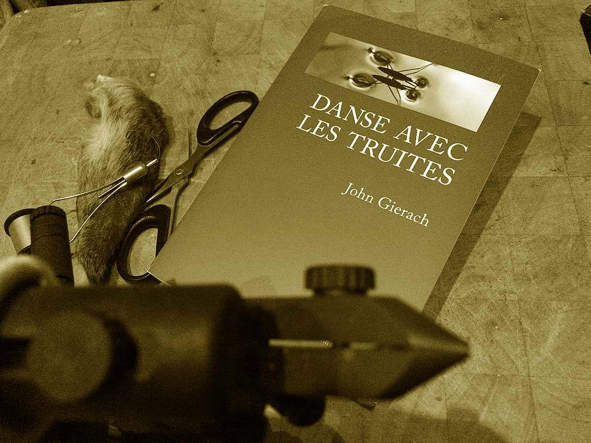 photo d'un livre de John Gierach un livre comme idee cadeau pecheur a la mouche