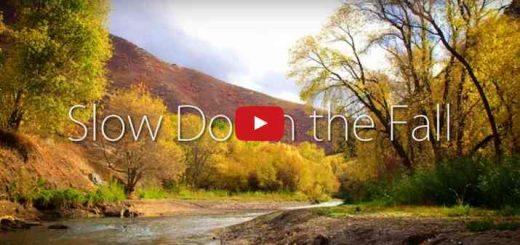 Photo tirée de la vidéo de pêche à la mouche dans l'Utah