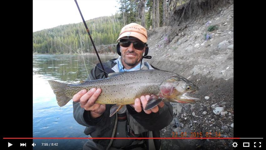 Jeune pecheur a la mouche avec énorme truite cutt-throat pechee dans la Yellowstone river dans le Montana