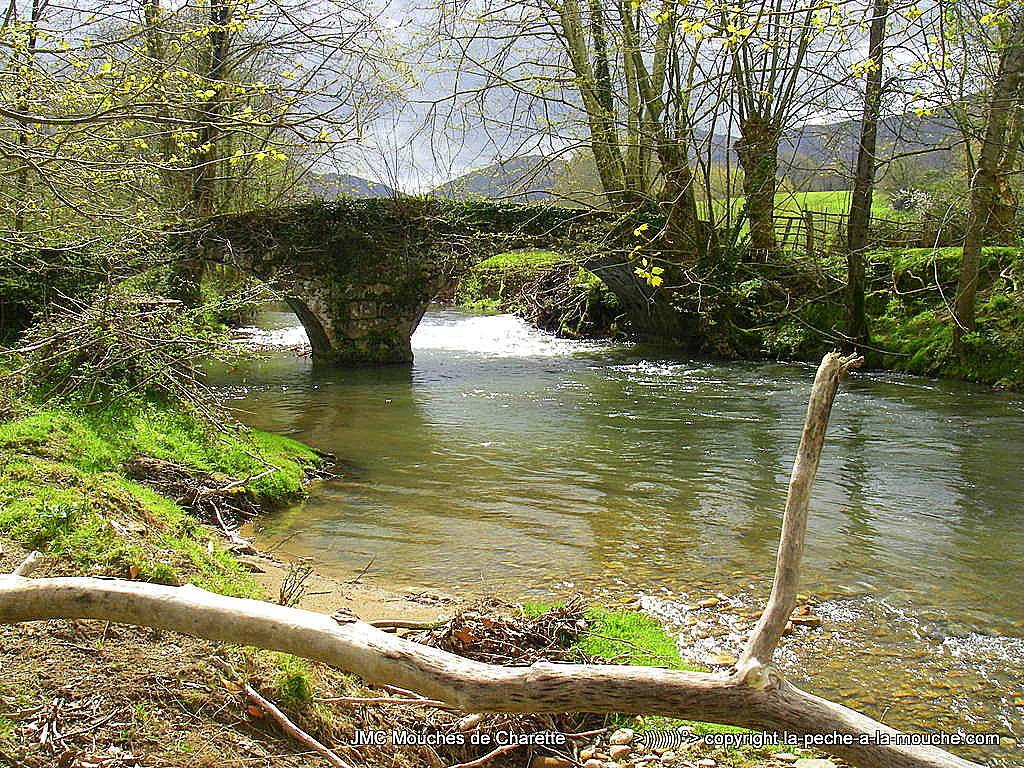 ouverture de la peche 2017 - photo d'un pont sur une riviere a truite