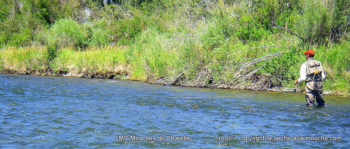 Nico, pêcheur en aval d'une bordure sur la rivière Madison river dans le Montana