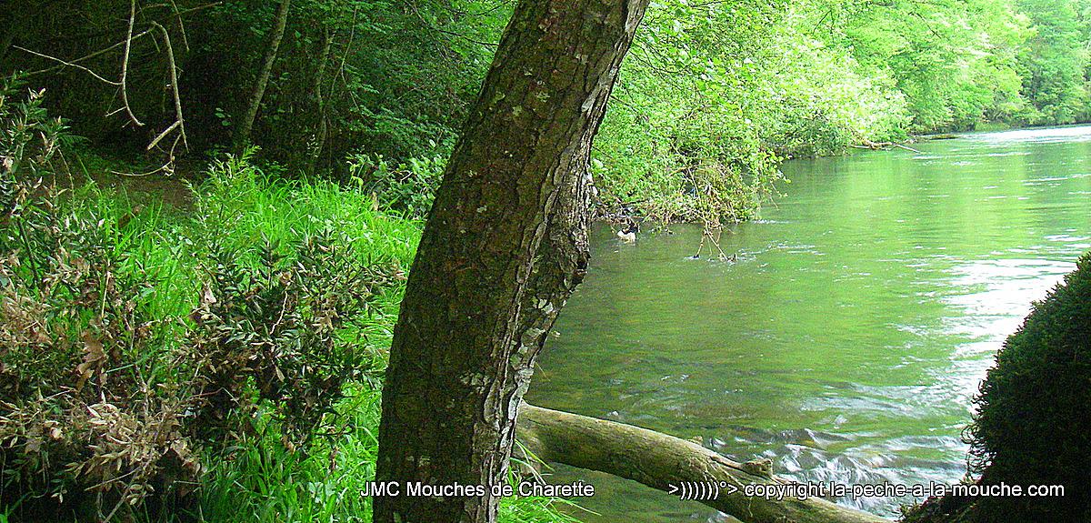 photo berge sur la rivière Grande Nive au Pays BAsque