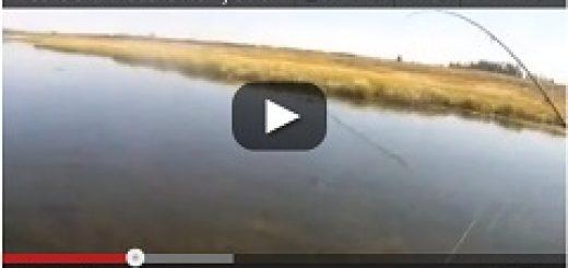 video-trip-peche-a-la-mouche-henrys-fork-2012