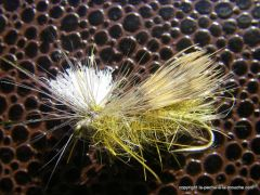 photo montage  du Lawson's caddis emerger olive avec parachute