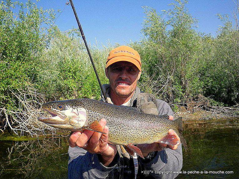 flyfishing-craig-montana-missomiuri-river-009.jpg